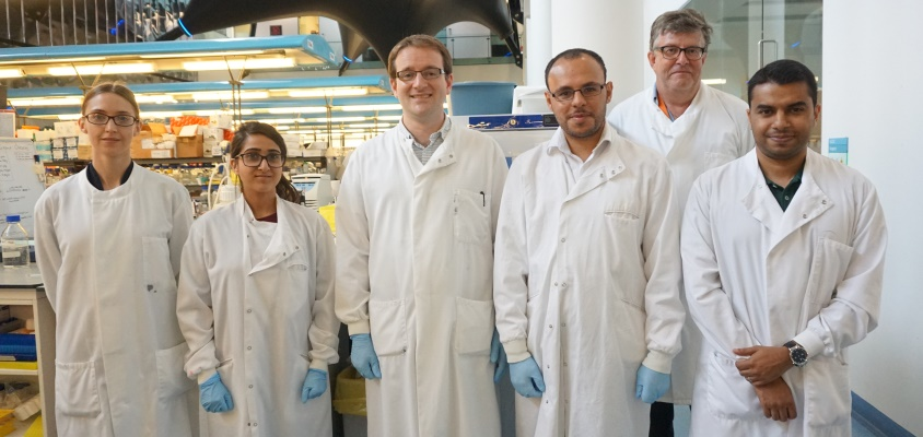 Professor Mike Philpott leads the team of researchers (right, back), which includes Animal Free Research UK funded lecturer Dr. Adrian Biddle (centre), postdoctoral researchers Dr. Gehad Youssef and Dr. Muhammad Rahman (front, right) and two Animal Free Research UK funded summer students, Stephanie Lunt and Shreya Asher (left).