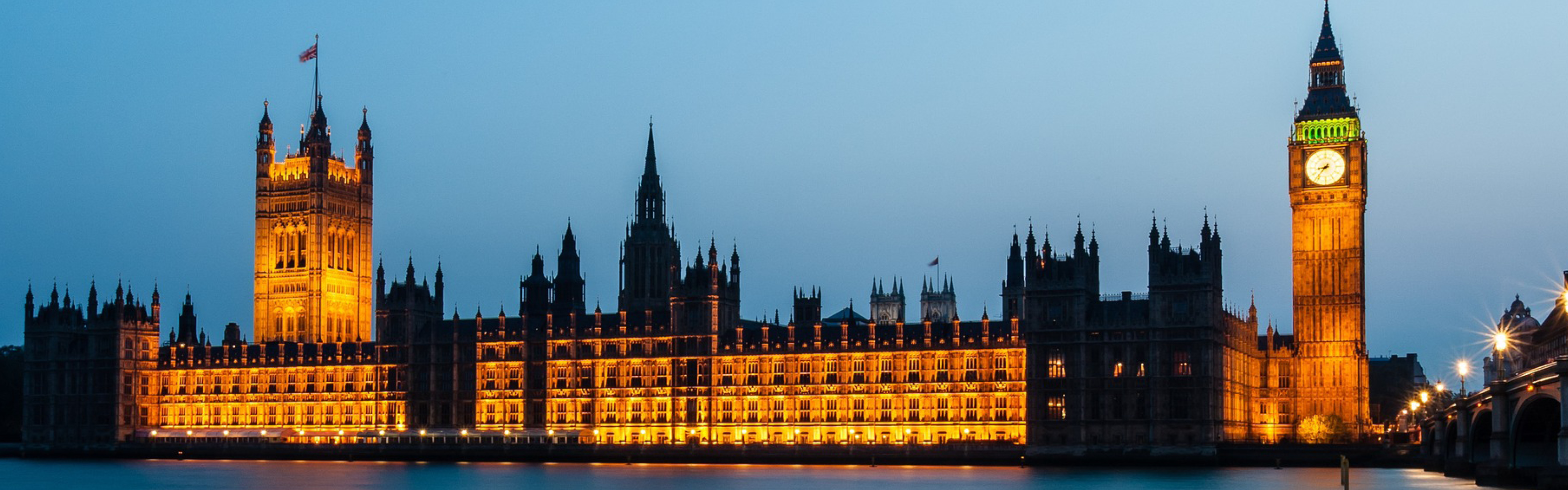 MPs reject inclusion of animal sentience in UK law