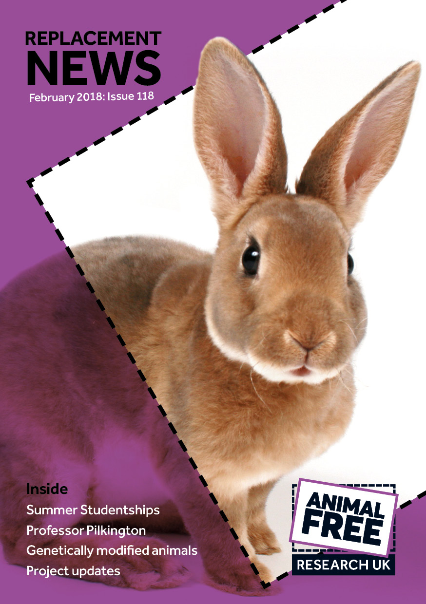 Cover of Replacement News magazine featuring a rabbit