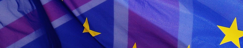 the future of animal welfare brexit eu uk law legislation
